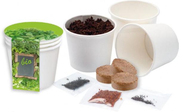 Kitchen Herbs Bio, Kresse, Basilikum, Zitronenmelisse, 1-4 c Digitaldruck inklusive