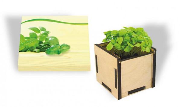 Pflanzsteckbox Green, Basilikum, 1-4 c Digitaldruck inklusive
