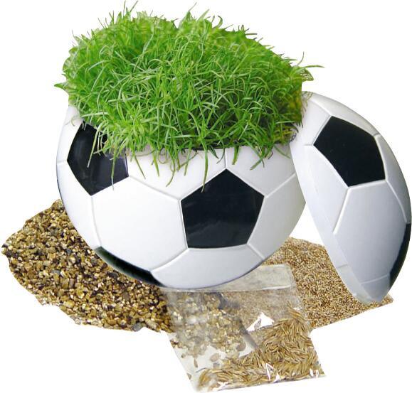 Rasender Fußball, Zimmerrasen - Werbeaufdruck: Tampondruck