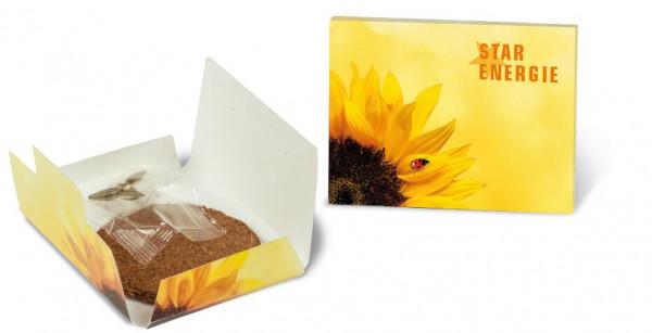 Sonnen-Päckchen, Zwergsonnenblume, 1-4 c Digitaldruck inklusive