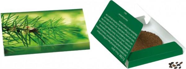 Fichten-Päckchen, 1-4 c Digitaldruck inklusive
