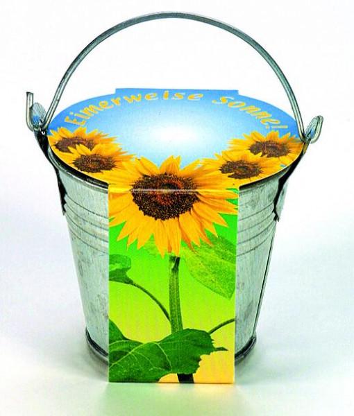 Zink-Eimerchen Sonne, Zwergsonnenblume, 1-4 c Digitaldruck inklusive