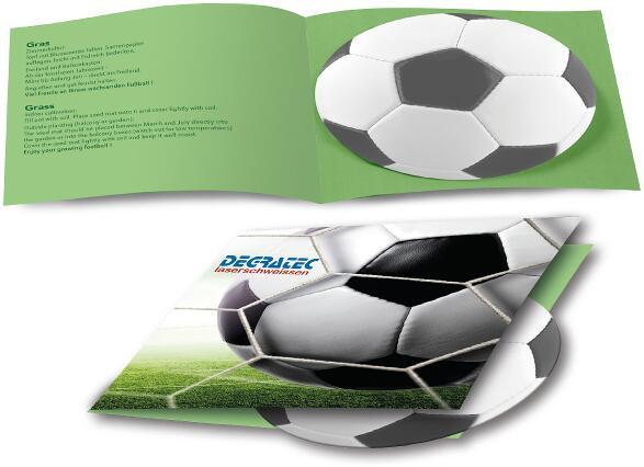 Fußball-Karte, Rasen, 1-4 c Digitaldruck inklusive