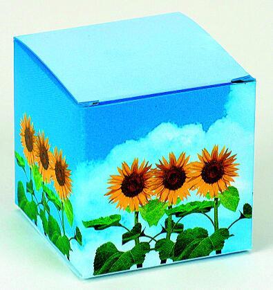 Würfel Sonnenblume, Zwergsonnenblume, 1-4 c Digitaldruck inklusive