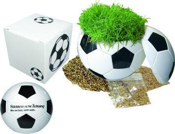 Rasender Fußball in Präsentpackung, Zimmerrasen - Werbeaufdruck: Digitaldruck